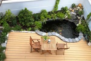 Thiết kế hồ cá koi mini